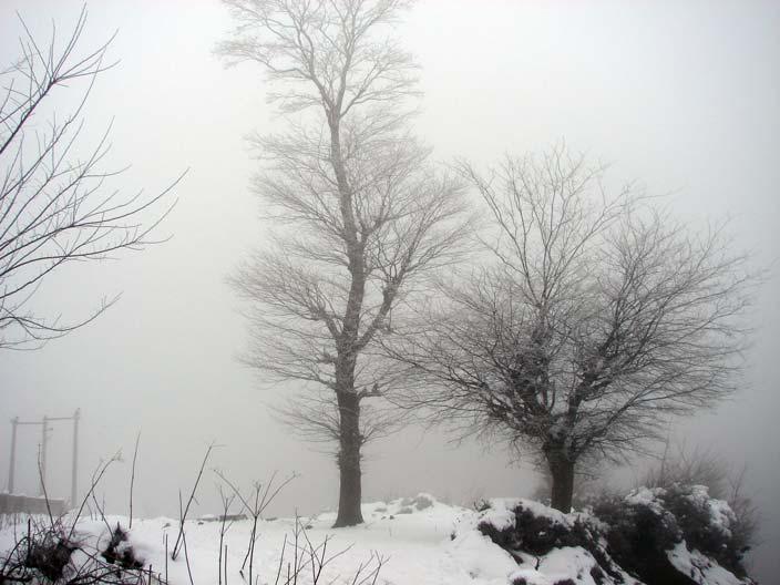 زمستان سینه هونی